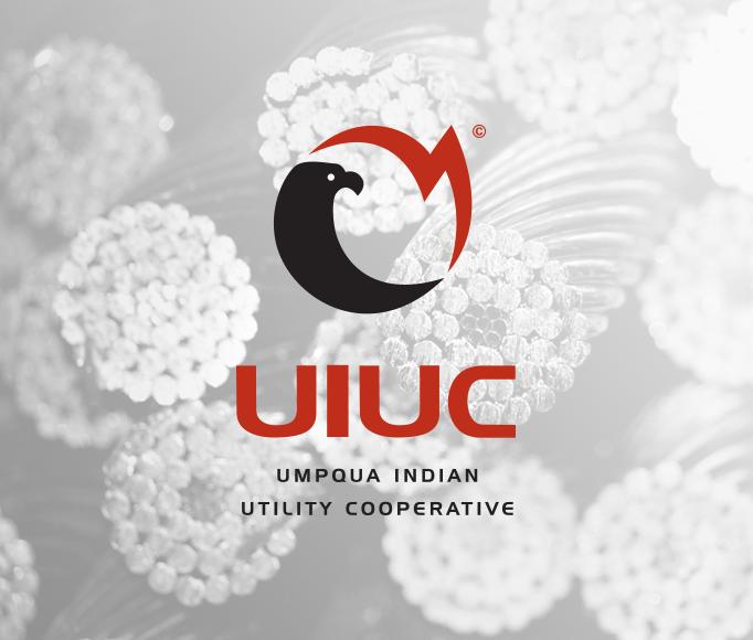 uiuc-logo3